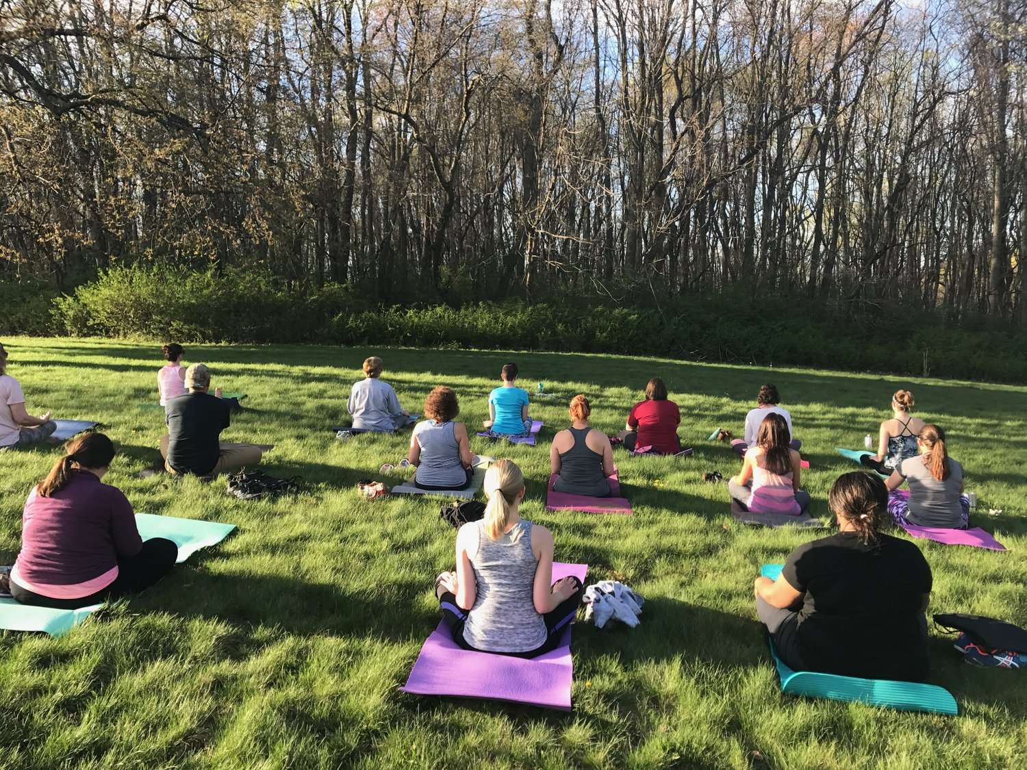 Wholehearter Yoga Group Classes Events