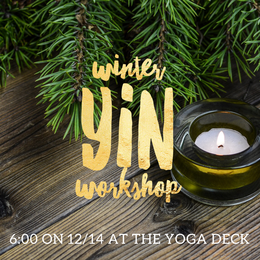 Winter Yin Workshop