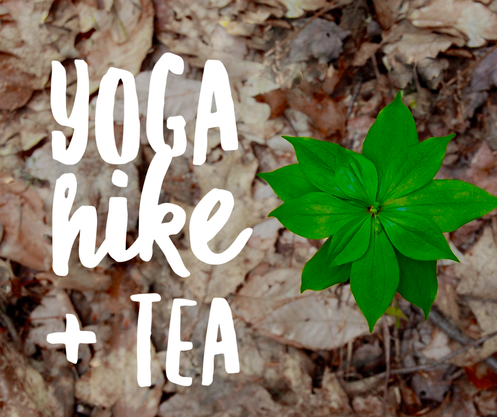 Yoga Hike and Tea at Bushy Run Park