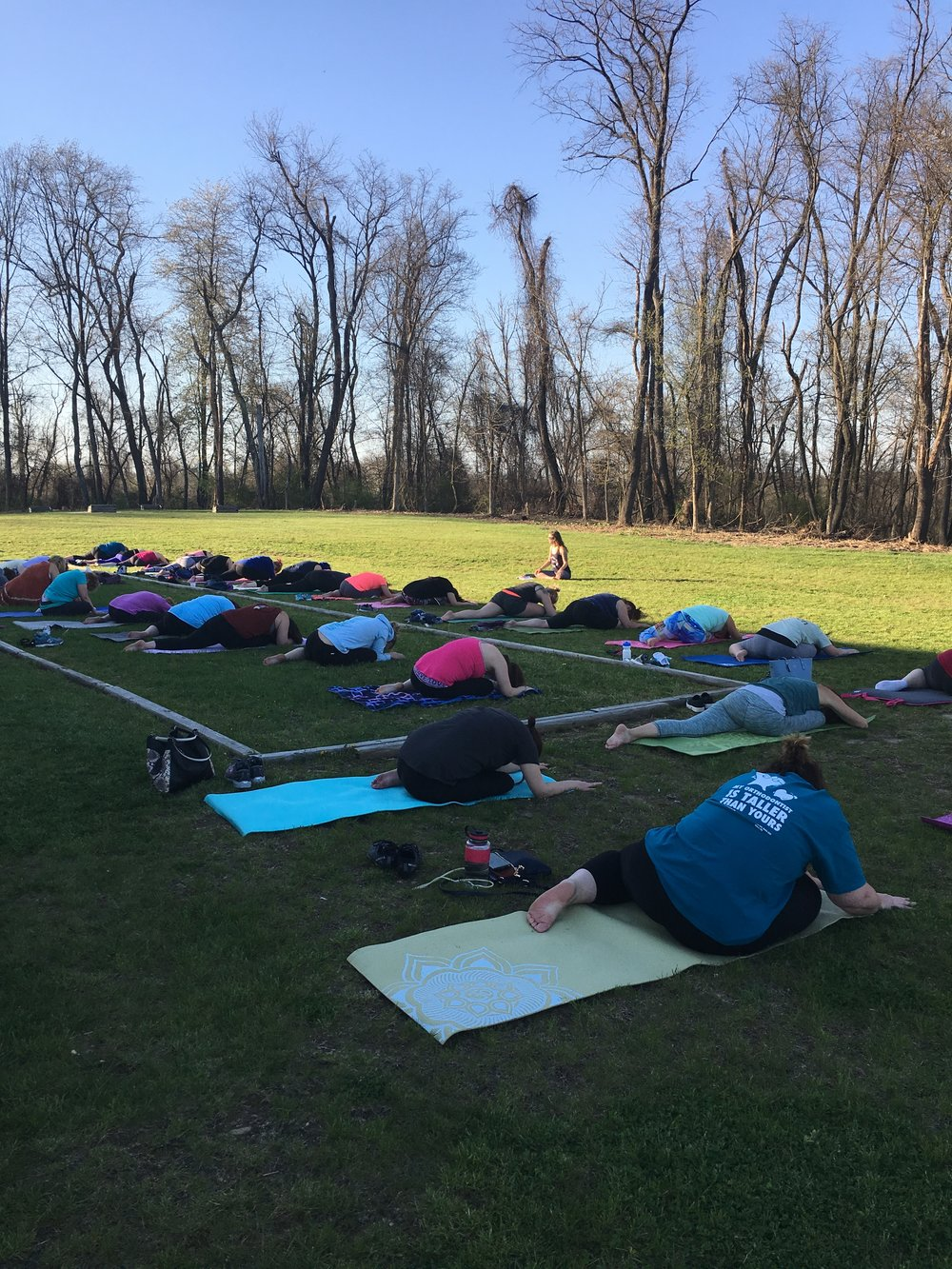 Outdoor Yoga at Greenhouse Winery