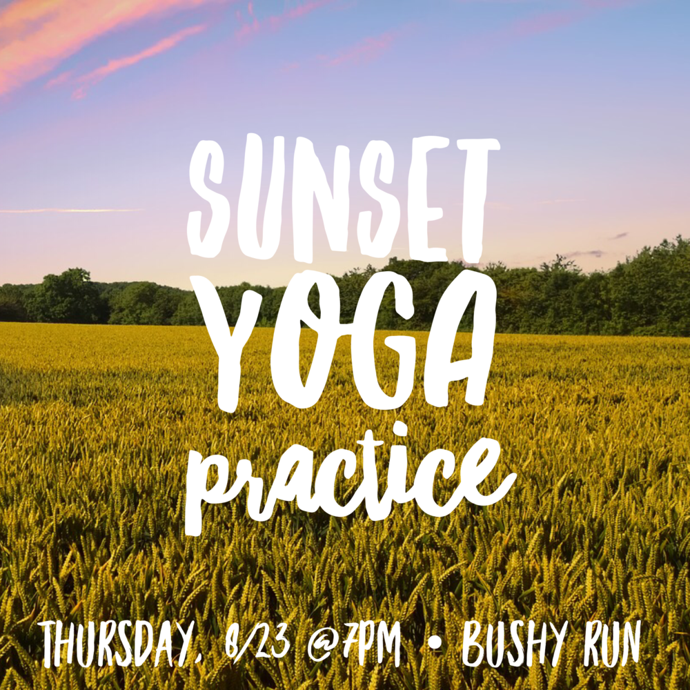 Sunset Yoga at Bushy Run Park