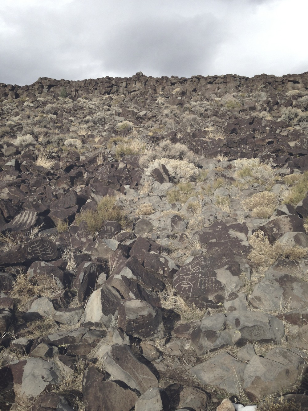 This is one view of the thousands of petroglyphs. Click the image to see a larger view.