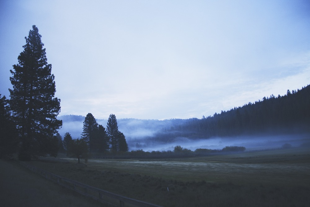 This was just as I pulled into Yosemite at sunrise.