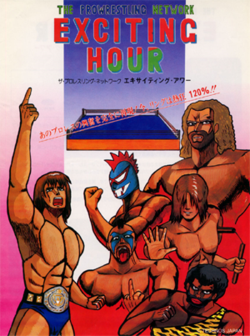 250px-TheProwrestlingNetworkExcitingHour_arcadeflyer.png