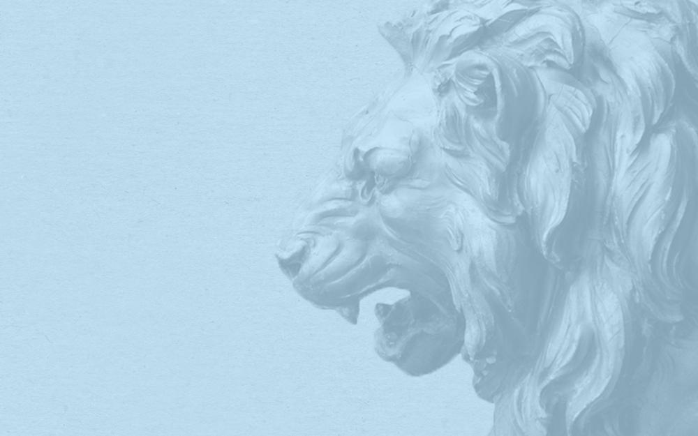 Stone Lion Inspiration