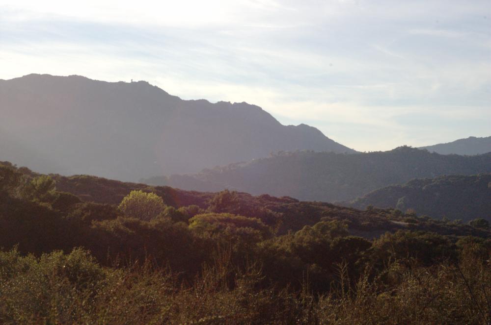 Topanga Canyon, where Dylan was raised.