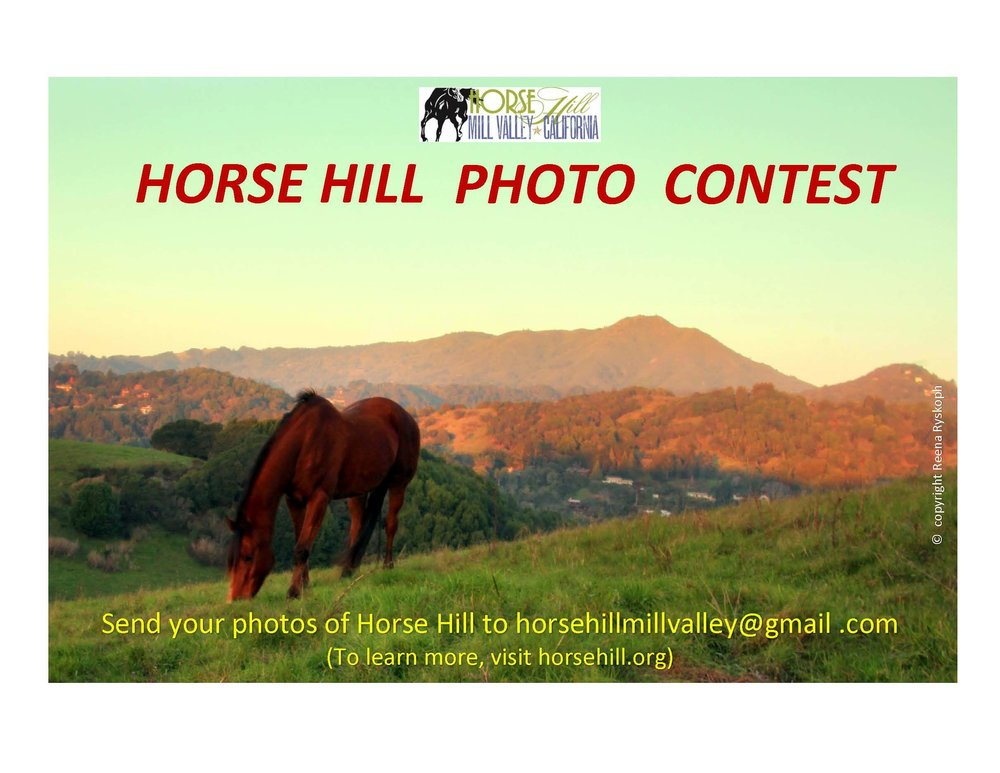 horse-hill-photo-contest.jpg