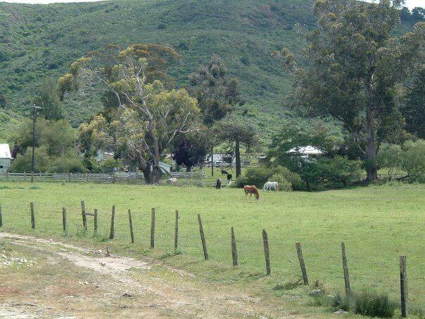 Murphy Ranch 2.jpg