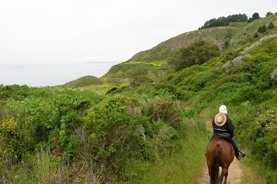 Pt Reyes green_trail.900x600.jpg