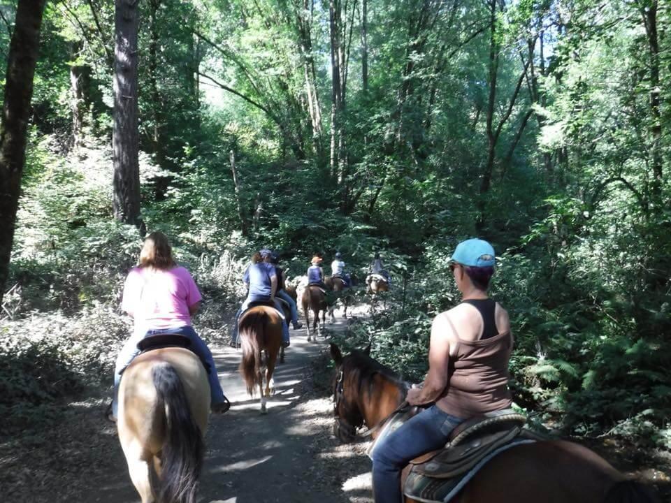 Stewart Horse Camp 5.jpg