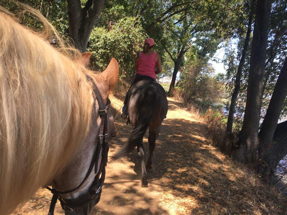 Sierra Rush Creek Linda Hevern Opie 2.JPG
