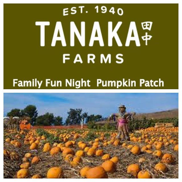 October 23rd ~ @tanakafarms Family Fun Day Pumpkin Patch. All proceeds go to #eastbluffelementary. (link in bio for more info) 🎃👻