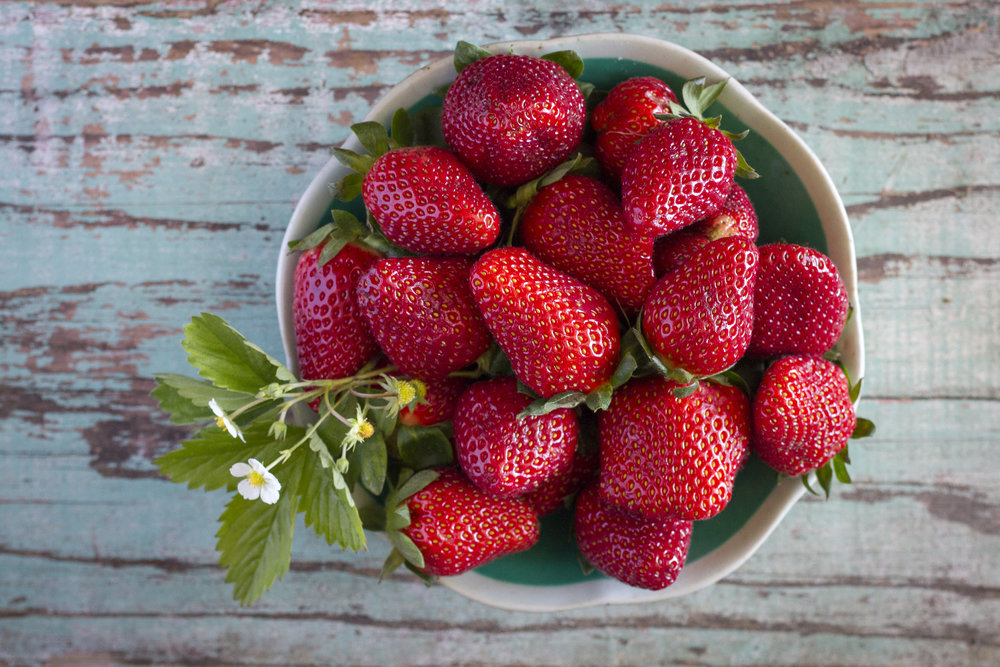 Tommys_strawberriesimg_0287.jpg