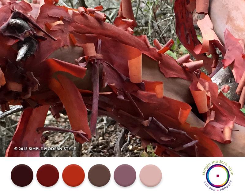 SMS17 Colorway Post June.jpg