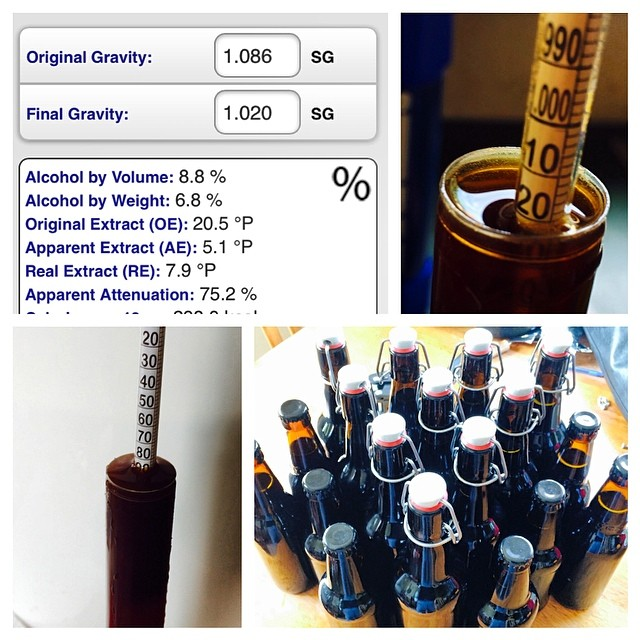 Just bottled the Breakfast Stout - it'll be a strong one! 8.8% !!!#homebrew #breakfaststout