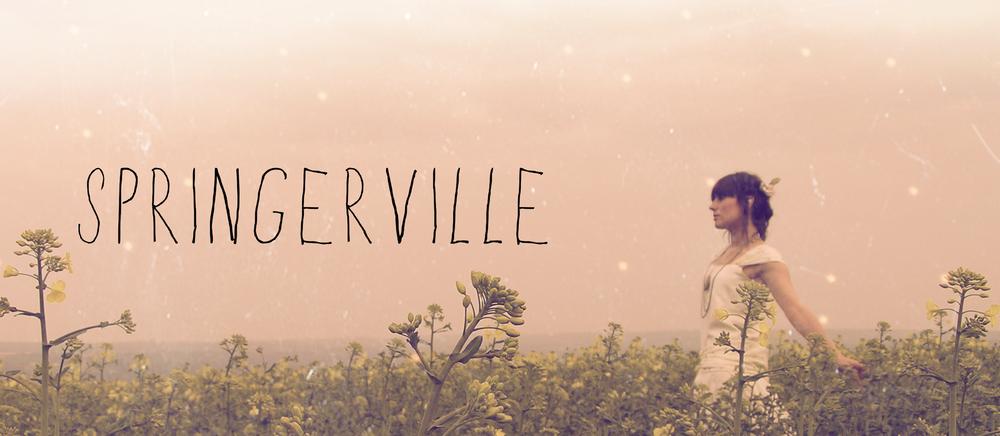 springerville-banner.png