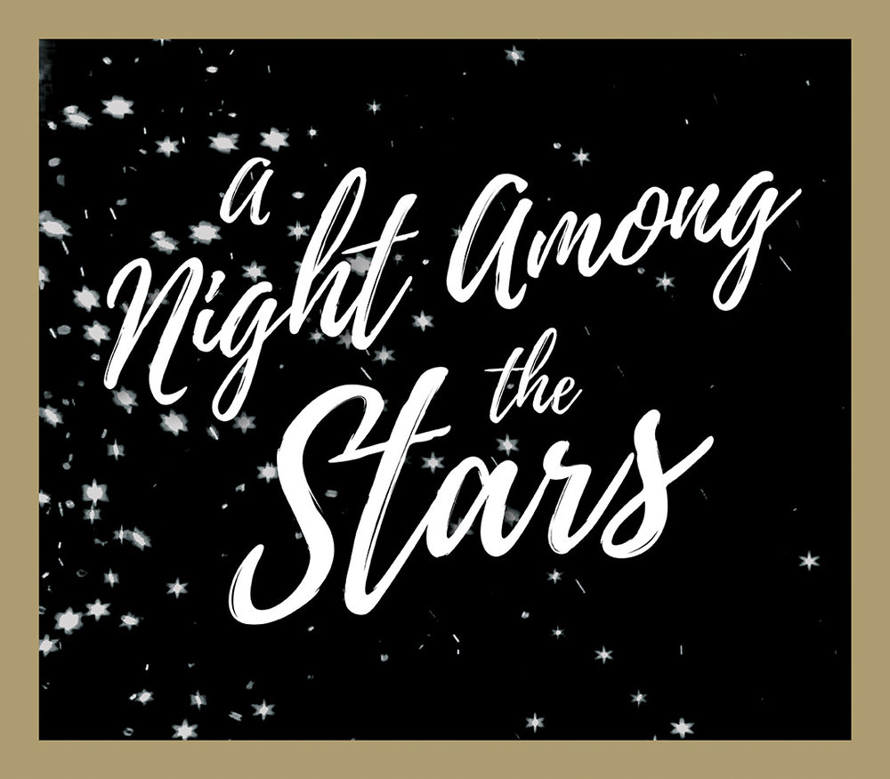 A Night Among the Stars logo_72dpi.jpg