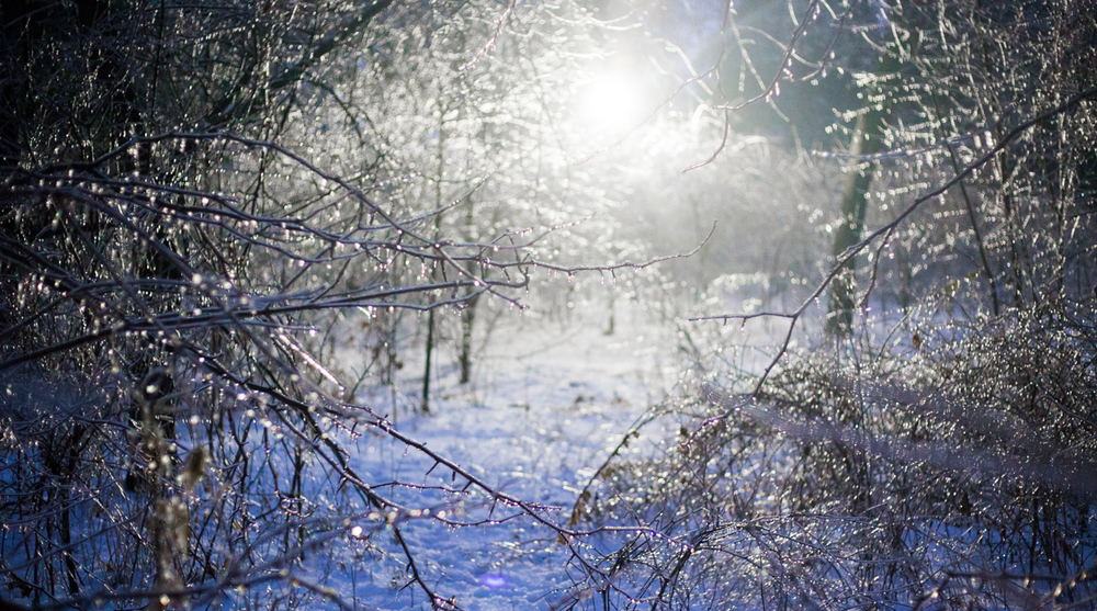 Ice Storm 2013 (15 of 19).jpg