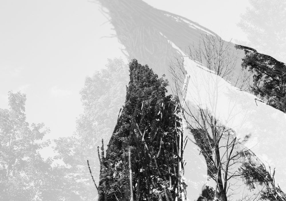 Double Exposure (web) (3 of 71).jpg