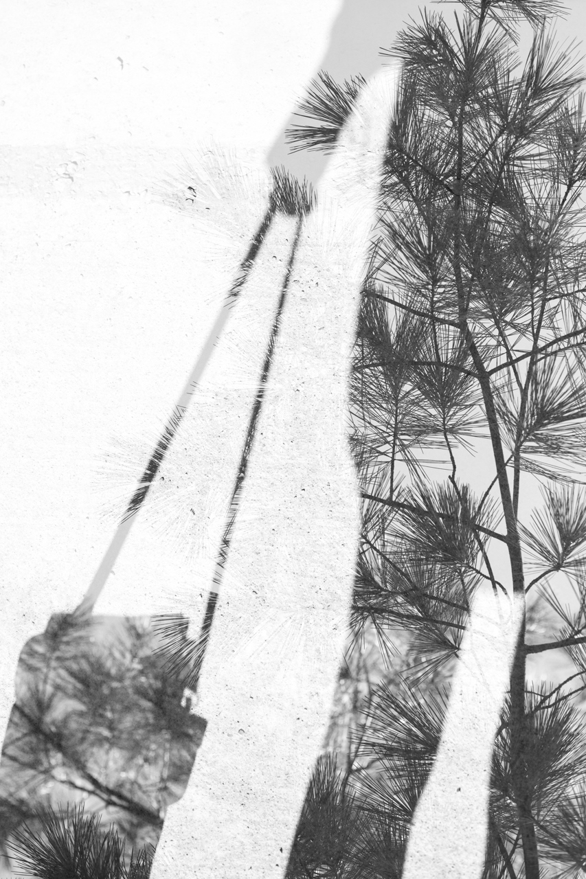 Double Exposure (web) (51 of 71).jpg