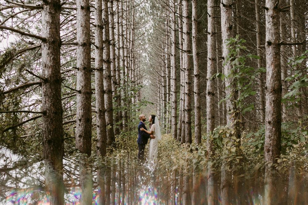 Toronto Elopement Photography (2 of 12).jpg
