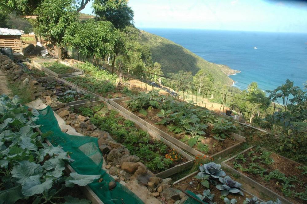 farm1-1024x680.jpg
