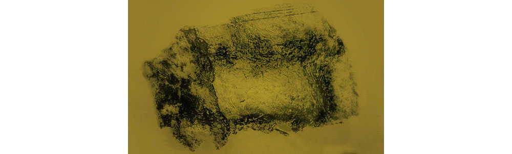 greg_bearman_imaging_ancient_text_02.jpg