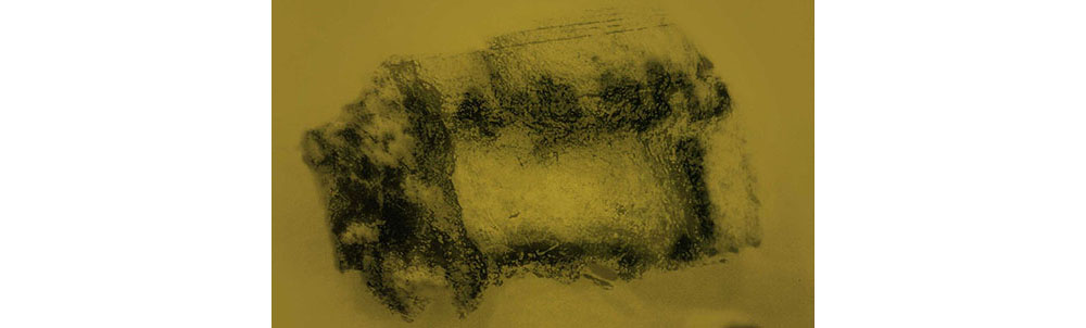 greg_bearman_imaging_ancient_text_03.jpg
