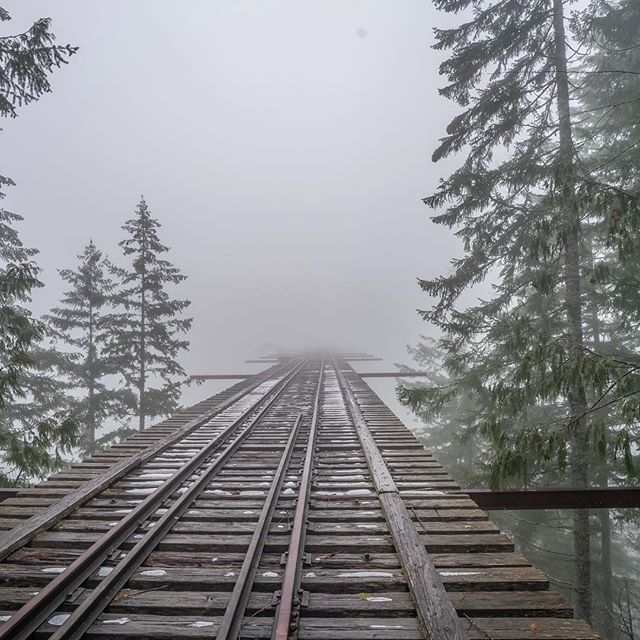 A bridge to nowhere . . . . . #adventure #beautiful #explore #forest #hiking #igers_seattle #instagood #liveauthentic #love #nature #naturelovers #neverstopexploring #outdoors #pacificnorthwest #pnwonderland #seattle #thatpnwlife #travel #trees #upperleftusa #washington