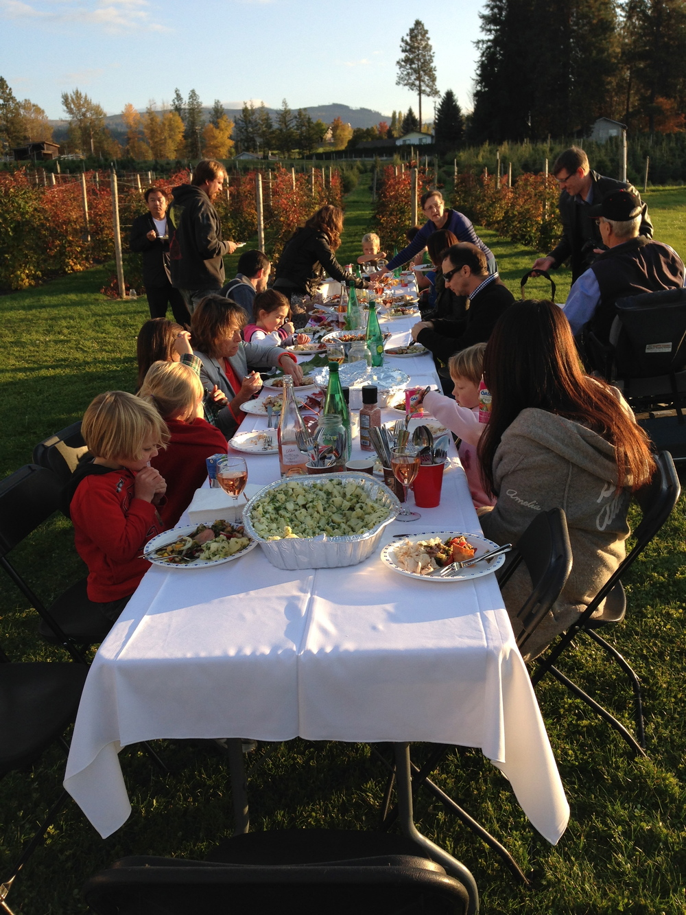 Outdoor harvest dinner to celebrate our new farm location with family & friends...