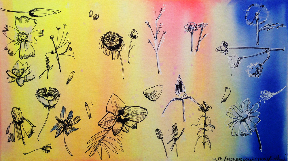 "collection of flowers / 2013 / pen, dr.marten's ink / 11"" x 20"""