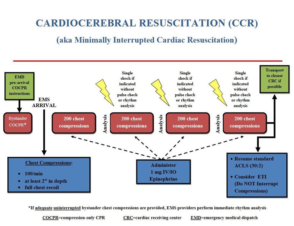 Cardiocerebral Resuscitation (CCR) pathway.JPG