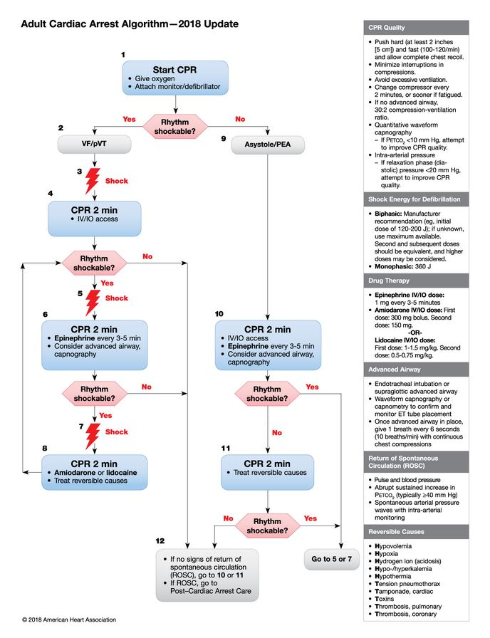 Adult Cardiac Arrest Algorithm  -  2018 update - 1.JPG