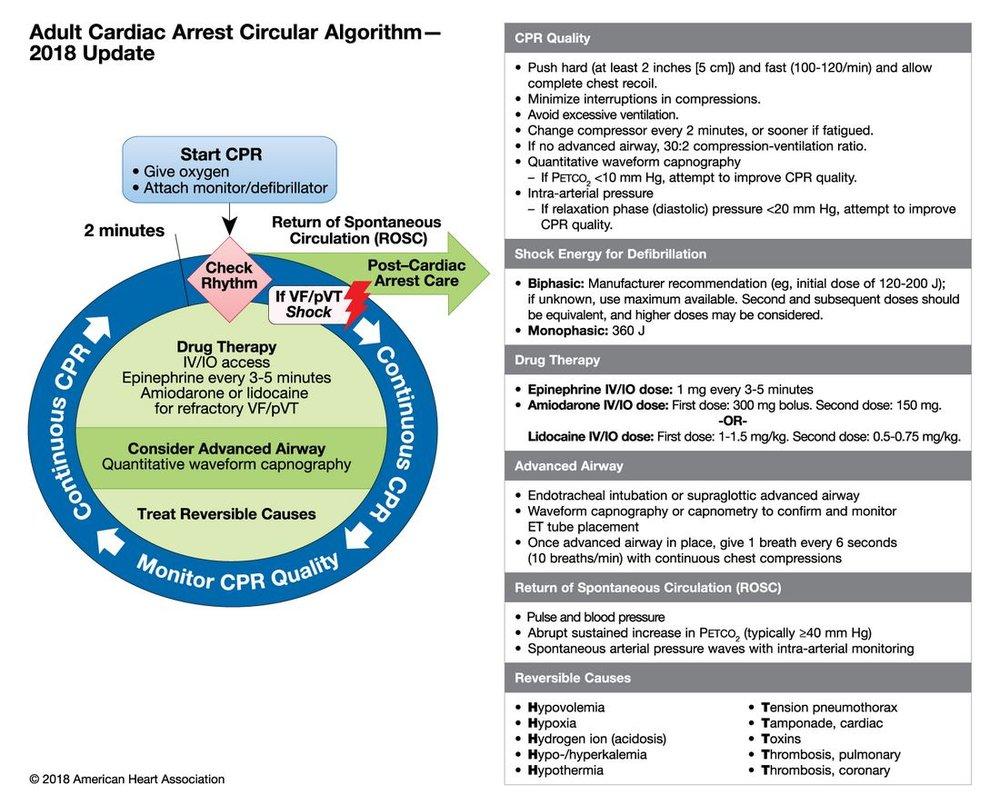 Adult Cardiac Arrest Algorithm  -  2018 update - 2.JPG