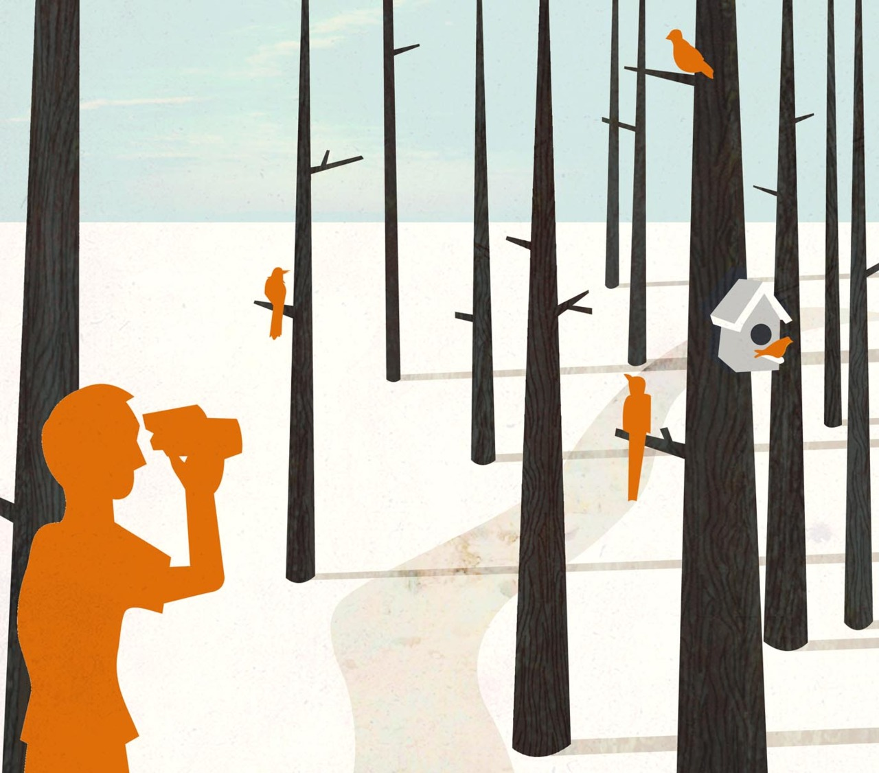 Nature walk/bird watching illustration for YCN