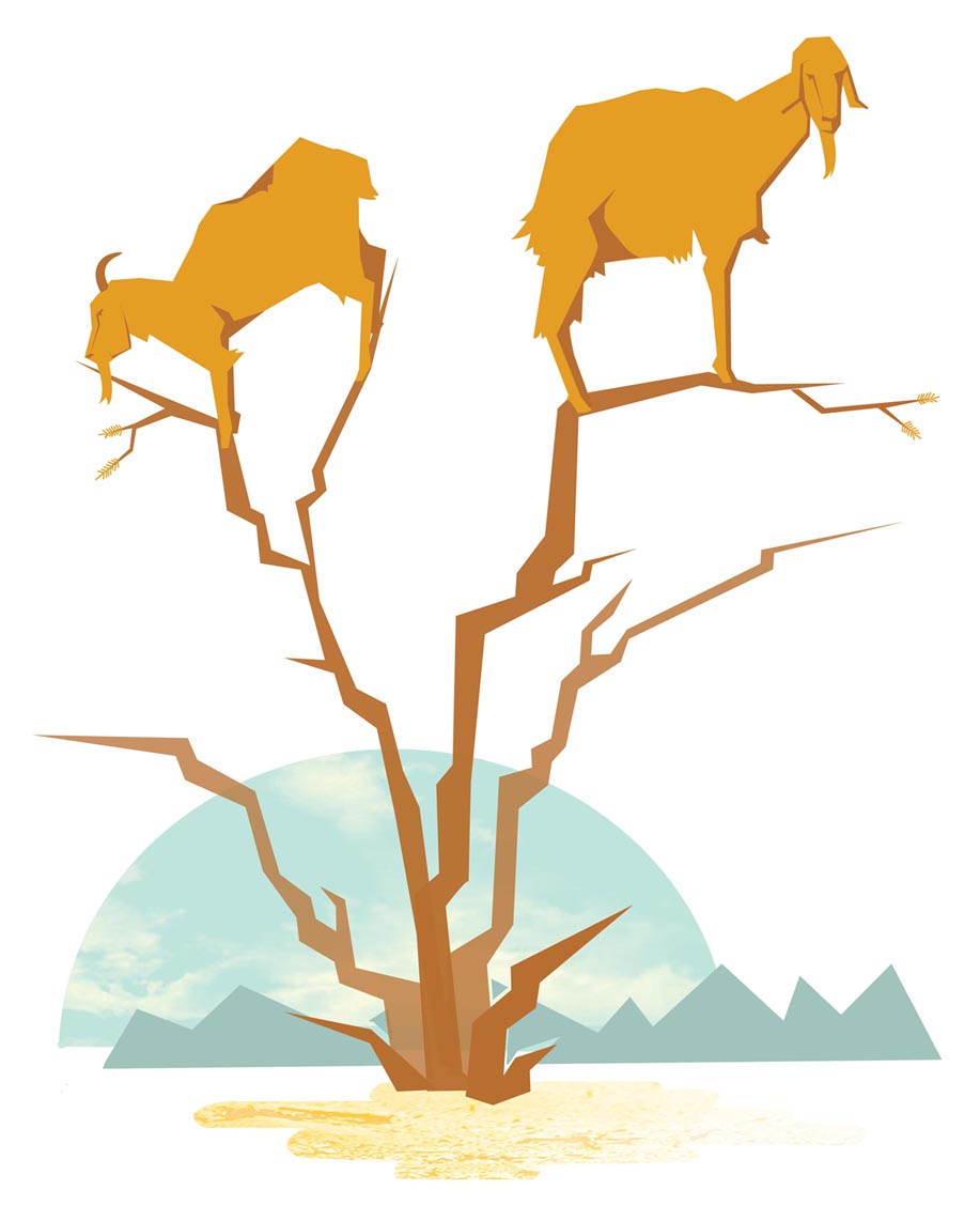 Goats up a tree illustration, part of a larger pattern i'm working on. And here are a few scans of some goat sketches.