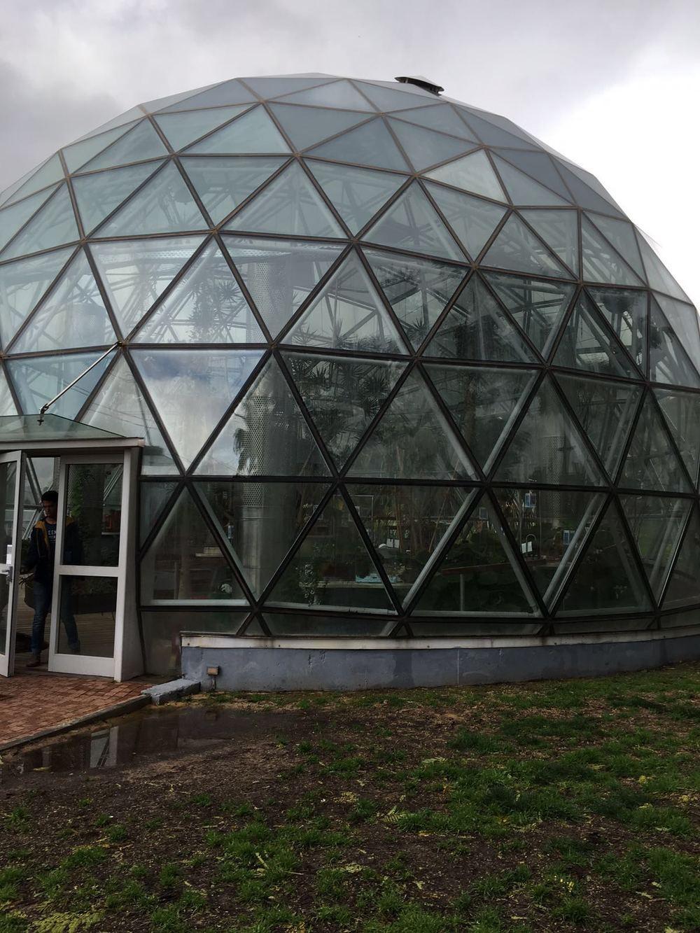 Weizmann Institute