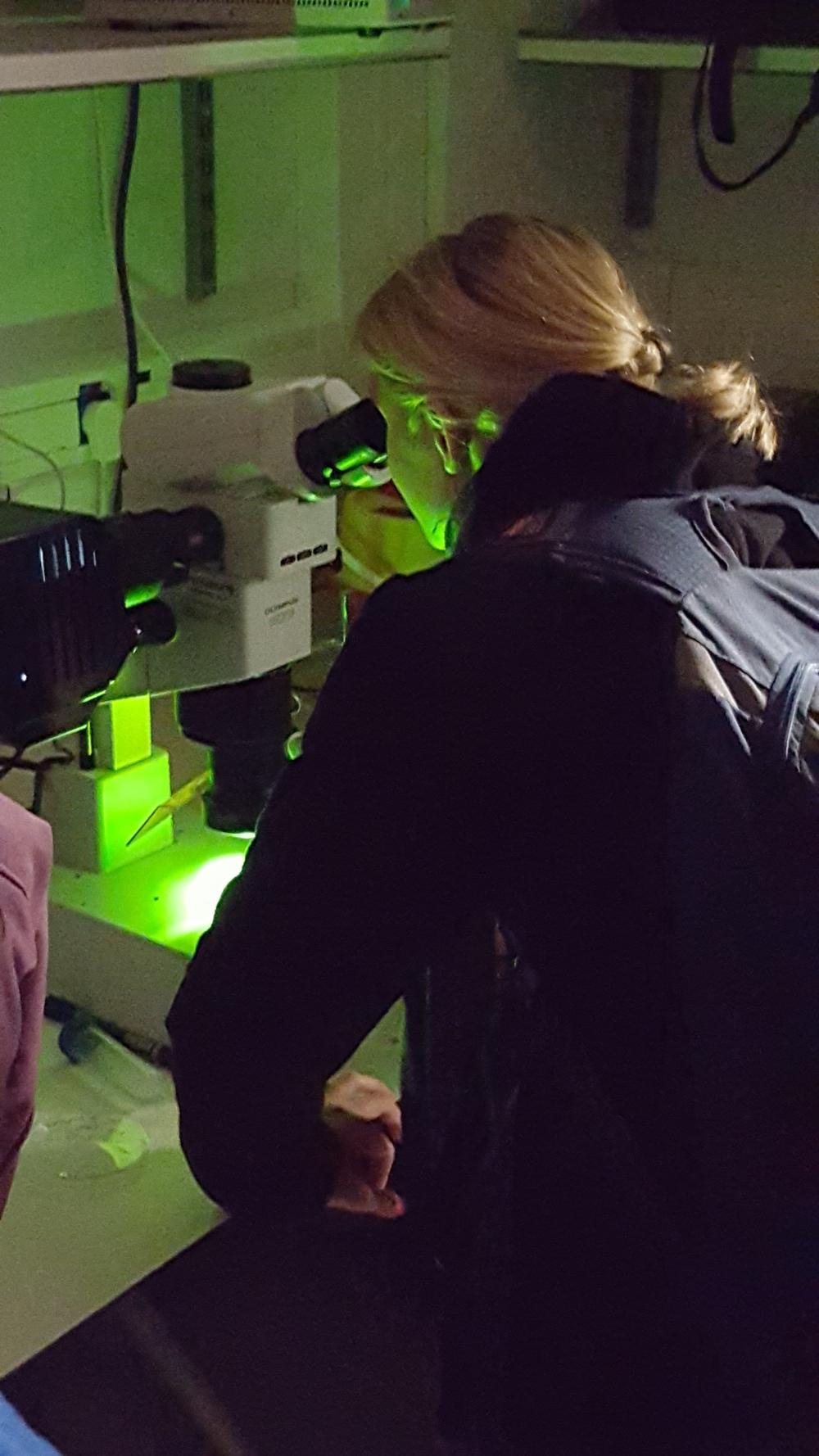 darbymicroscope.jpg