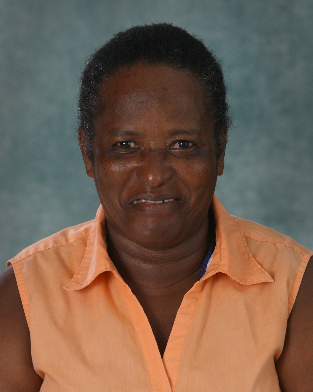 Rosemary Alcendor, Custodial
