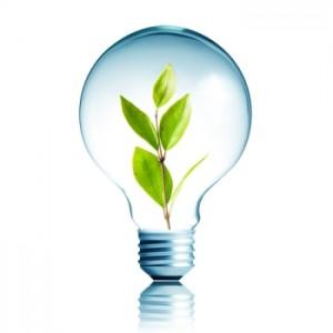 eco-led-bulb-300x300.jpg