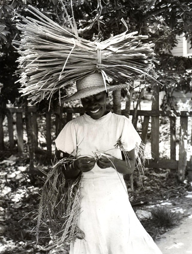 A traditional skilled Bahamian straw artisan displaying examples of the harvesting, processing and the initial plaiting stage of the straw fronds into woven ribbons which will be used for the manufacture of unique products