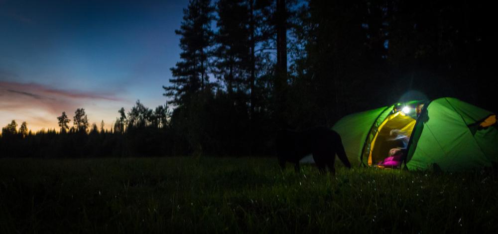 Nattläger någonstans i uppländska skogar