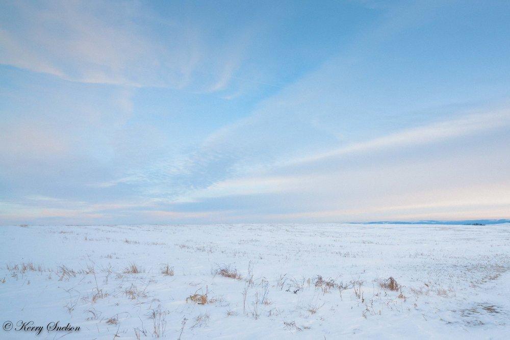 Snowy Praire