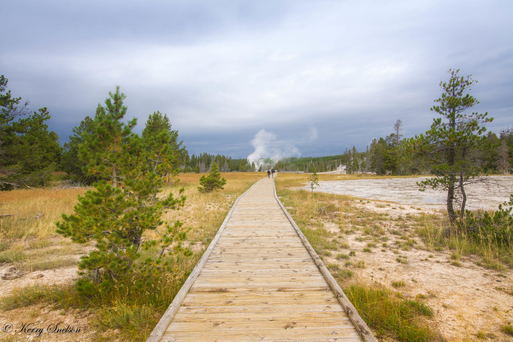 Landscape of Boardwalk, Old Faithful Area.