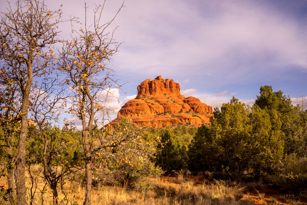Tree Framed Bell Rock