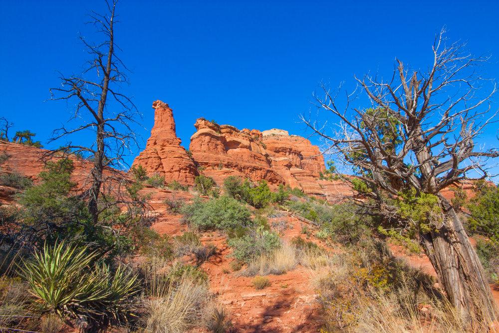 Red Rock Desert Landscape