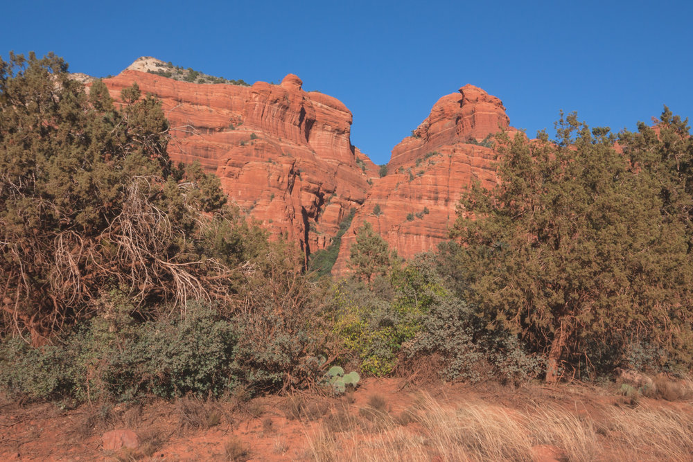 Red Rock Wall Landscape