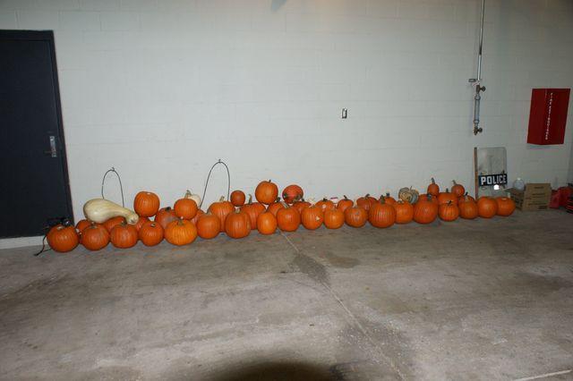 pumpkins_1509020507640_69809916_ver1.0_640_480.jpg