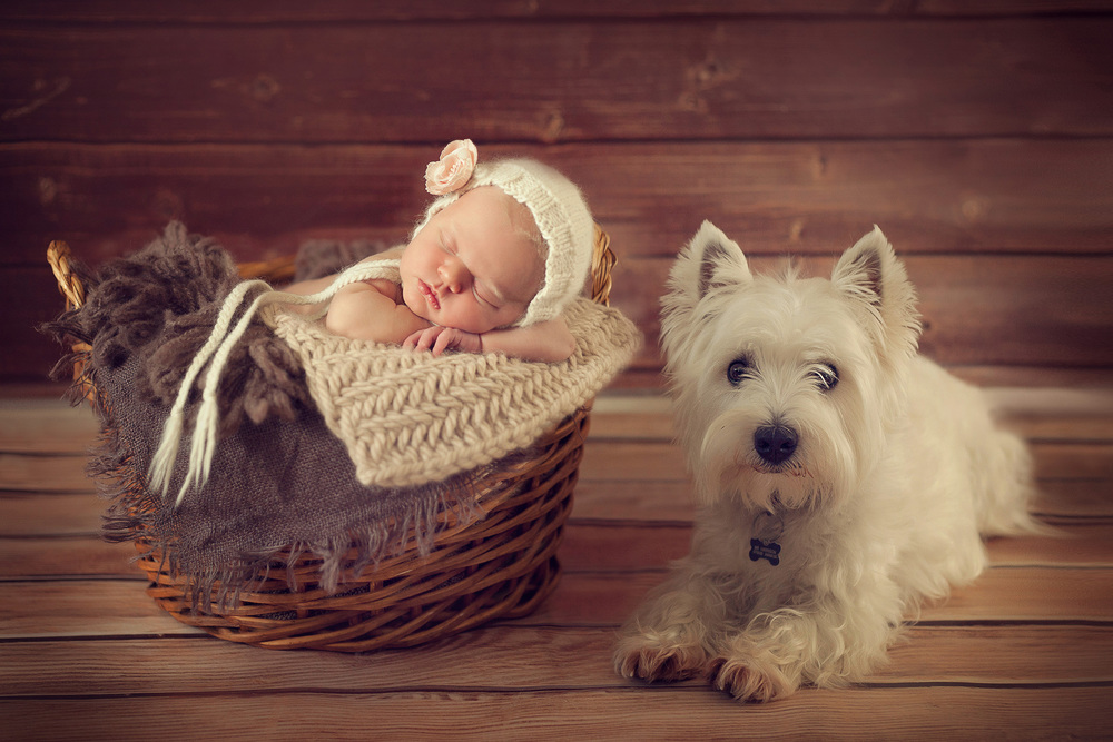newborn baby girl and a puppy