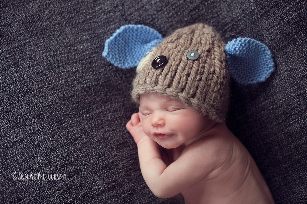 newborn photography ascot ann wo05.jpg